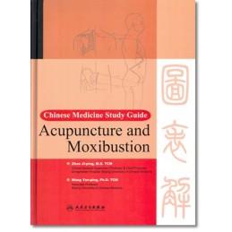Chinese Medicine Study...