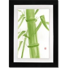 Aguarela Bamboo